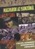 Háborús emlékek - magyar képregények a Nagy háborúról