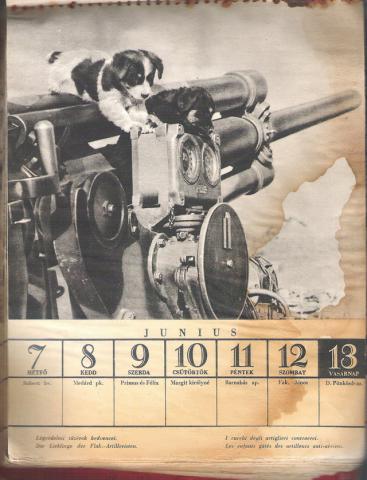 Doni naptár 1943 június